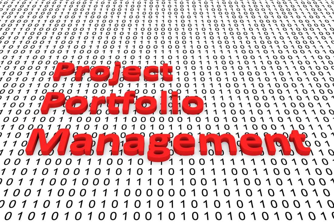 Binär, Project Portfolio Management, Projektportfoliomanagement, Projektkoordination, PMO, PPM