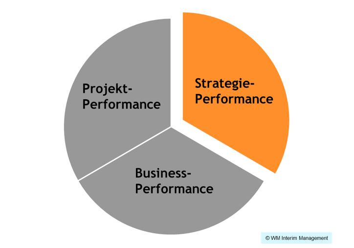Strategie-Performance, Business-Performance, Projekt-Performance, Unternehmensführung, Leadership, Unternehmenssteuerung, technische Steuerung Unternehmen, Zeiten des Wandels, Unternehmensleitung