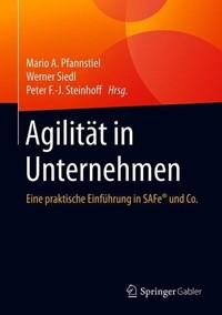 Buch: Agilität in Unternehmen